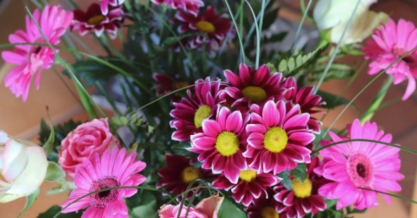 bouquet-of-flowers-4803109_1280